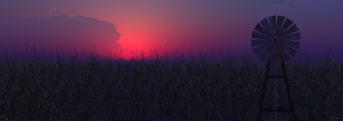 The Corn Field as photographed by Ziki Questi of  http://zikiquesti.blogspot.com/